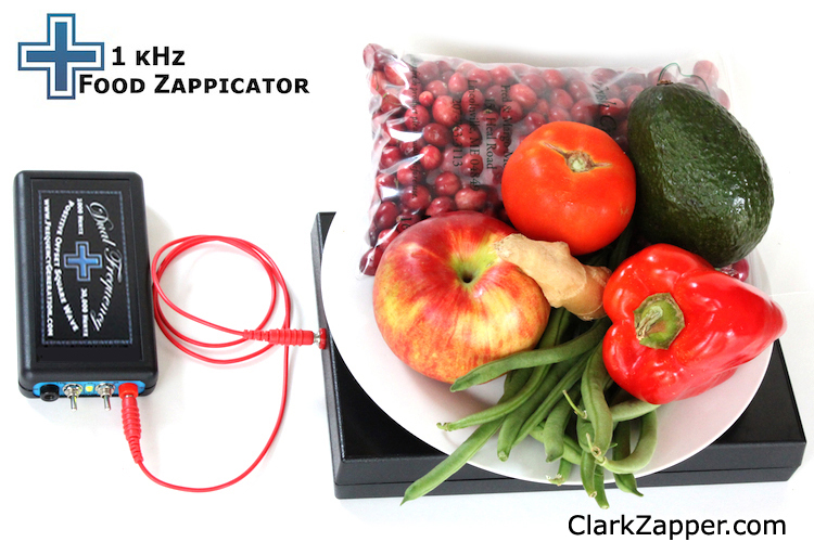 Dual Frequency Hulda Clark Zapper and North Pole Speaker Box set up as Food Zappicator